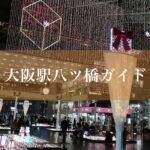 大阪駅八ツ橋ガイド